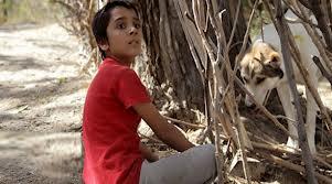 اهدا پروانه و لوح زرین جشنواره کودک اصفهان به فیلم تابستان طولانی