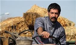 اولین خبر و تصاویر از سریال جدید «مسعود رشیدی»